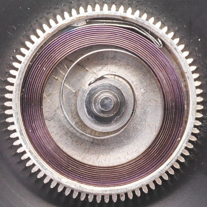 Mainspring in Going Barrel